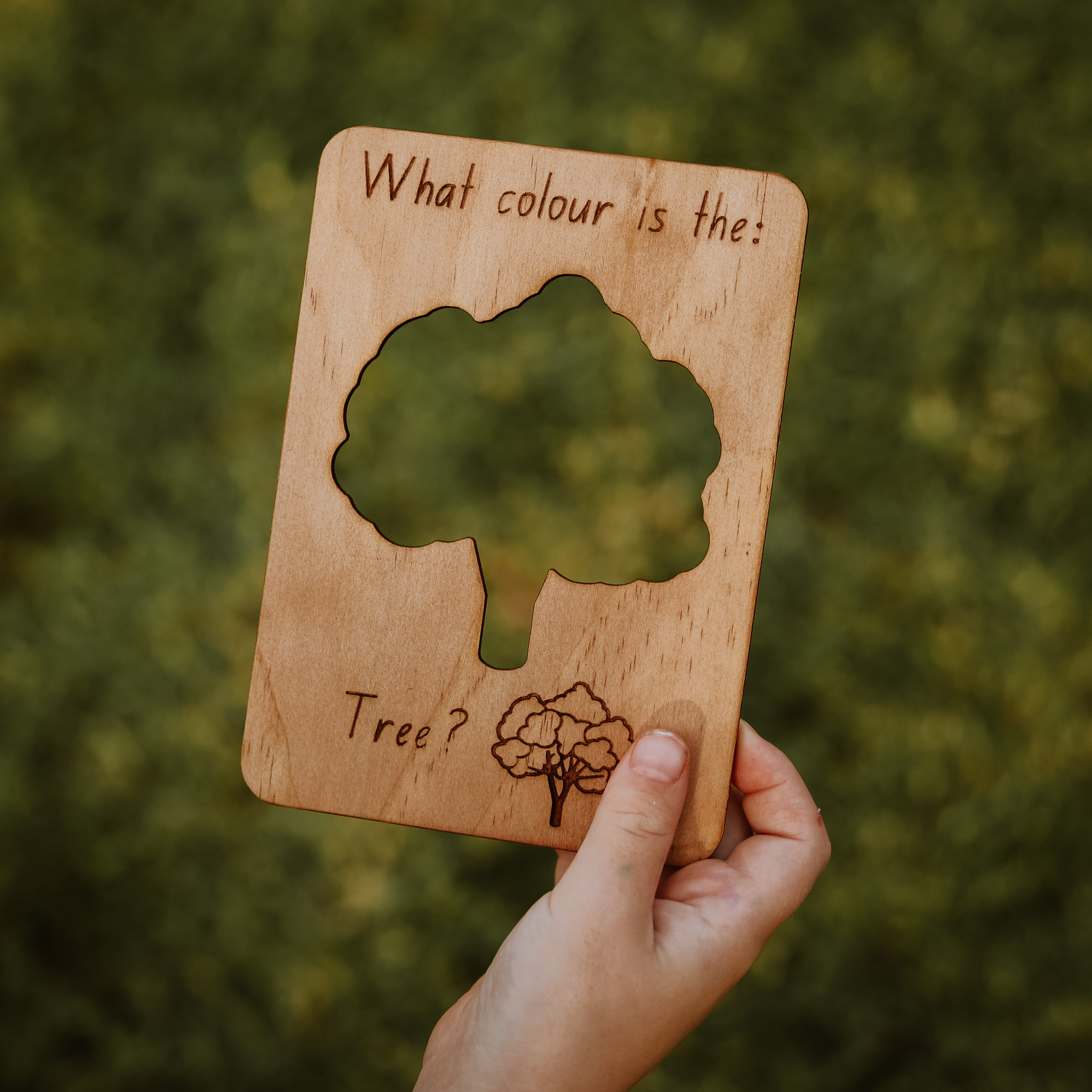 Seek & Find Wooden Flash Cards