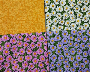 Daisies, purple, pink, white