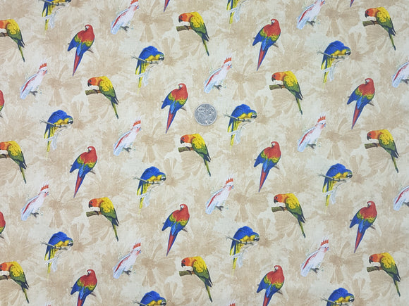 Parrots, all over on beige