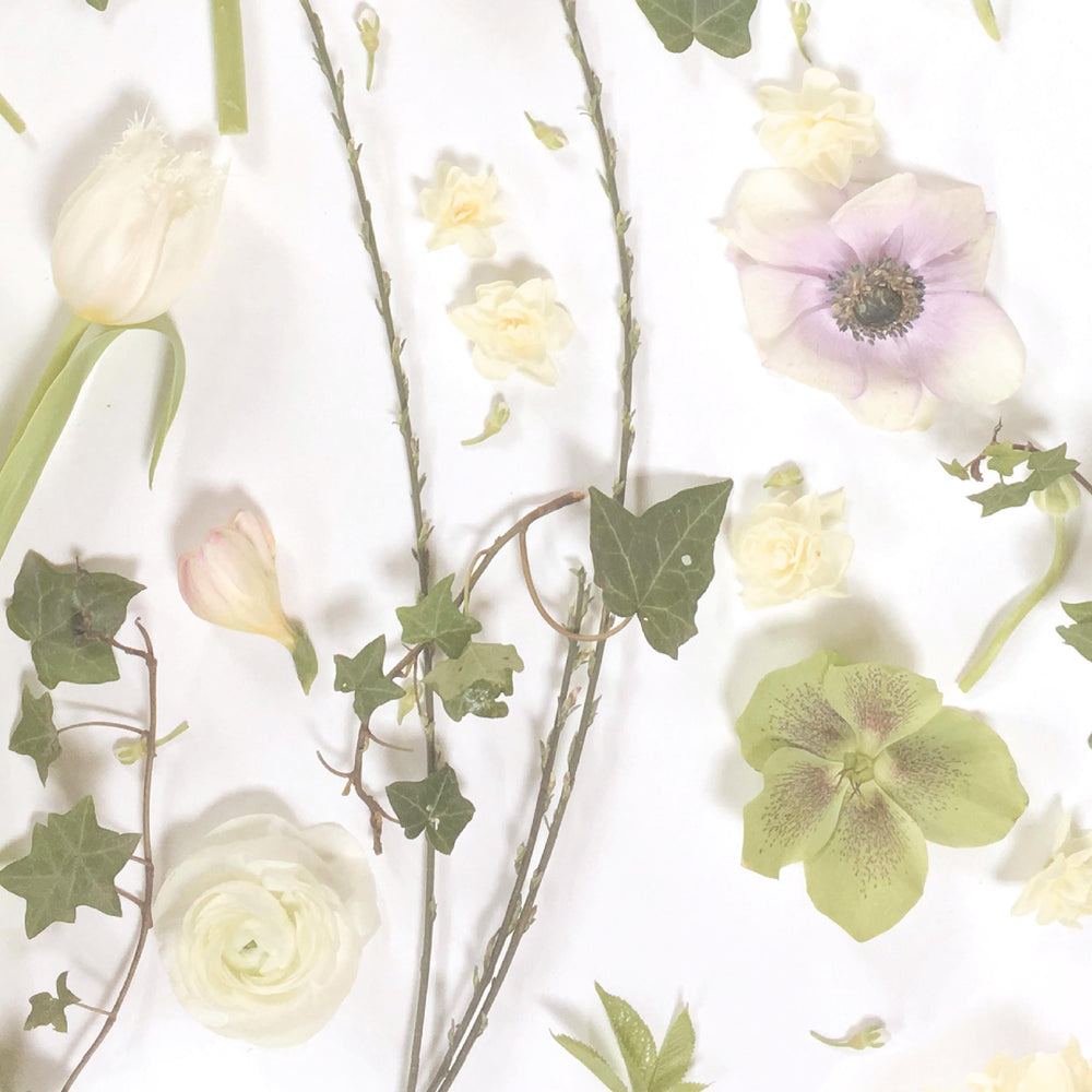 Springtime Floral Wallpaper By Woodchip & Magnolia