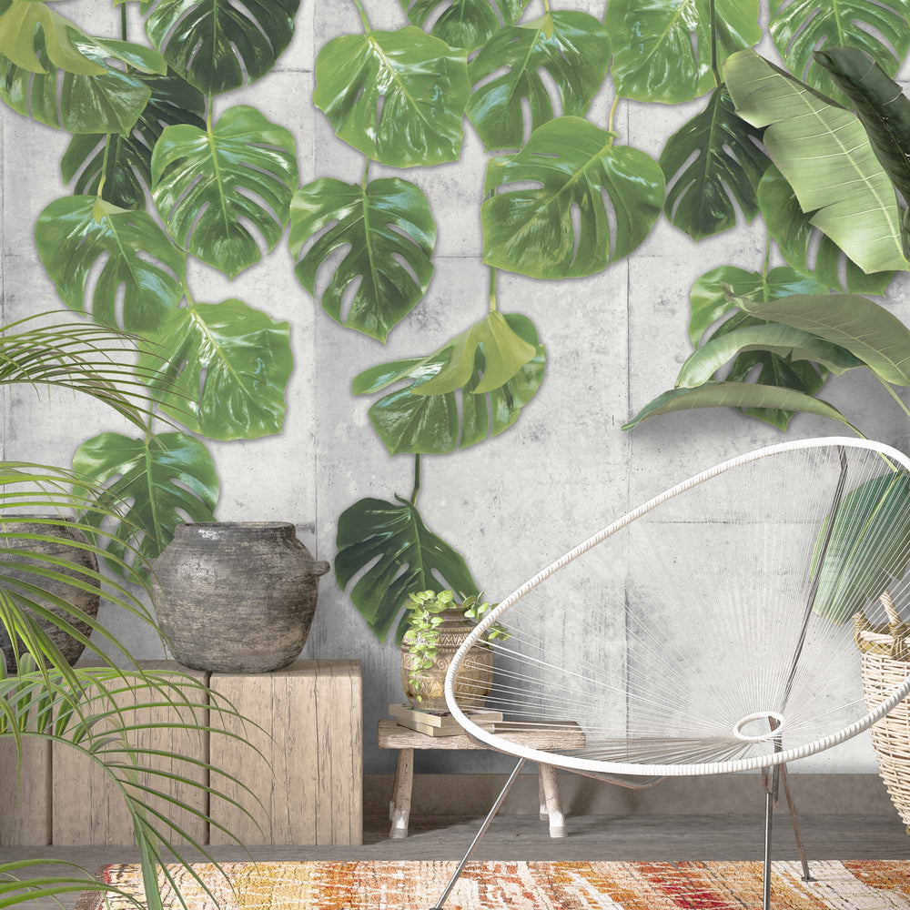 Real Monstera Wallpaper Mural