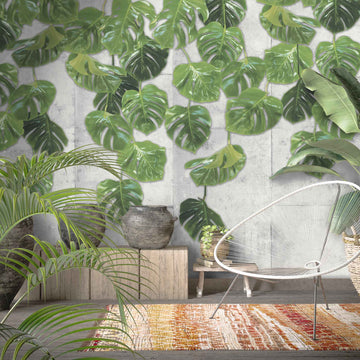 Real Monstera Wallpaper Mural By Woodchip & Magnolia