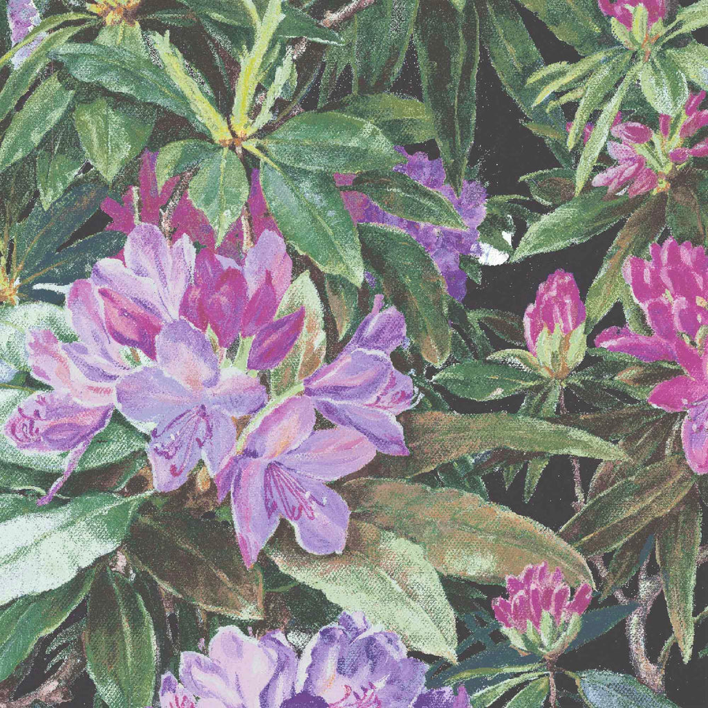 Rhododendron Purple & Black Floral Wallpaper