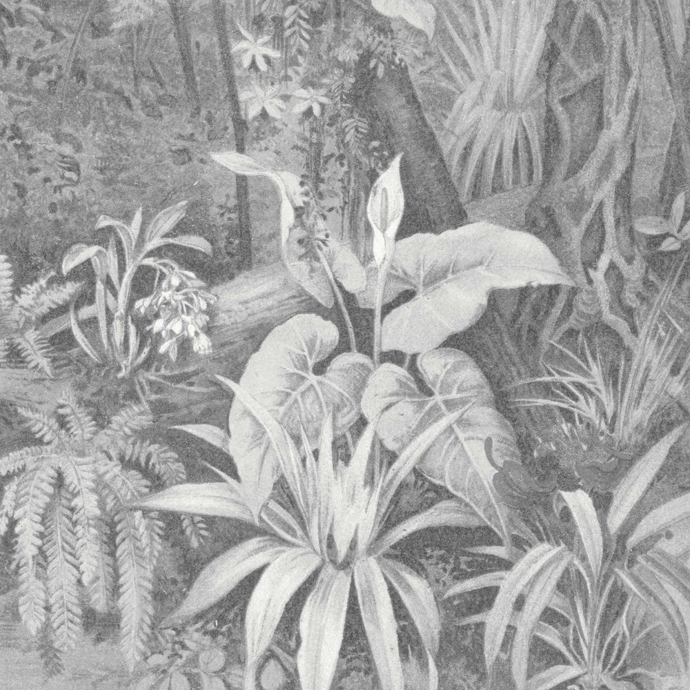 Tropical Paradise Jungle Mono Grey Wallpaper Mural