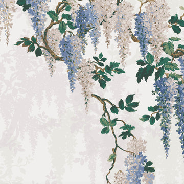 Wisteria in Cornflower Blue Wallpaper