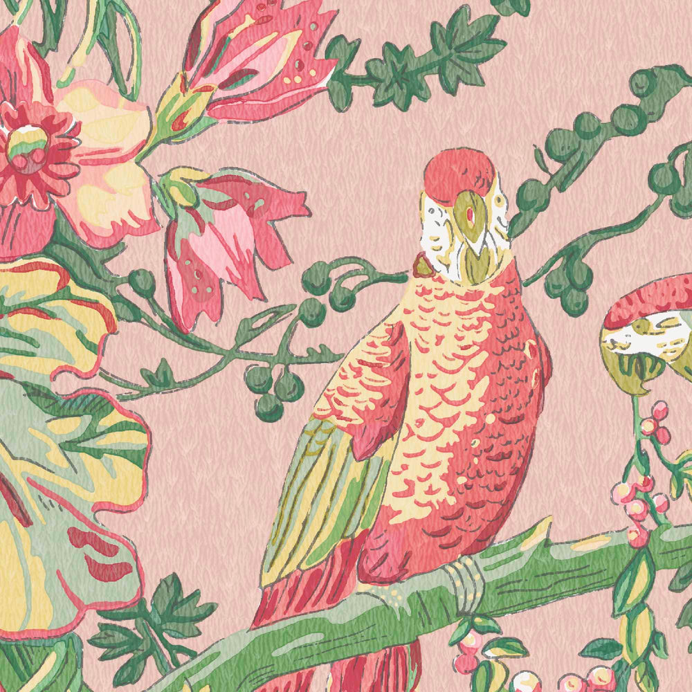 Parrot Talk Sunset Pink