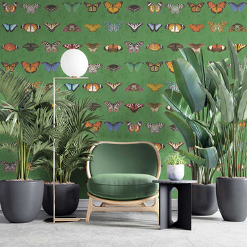 Lepidoptera Willow Green Wallpaper