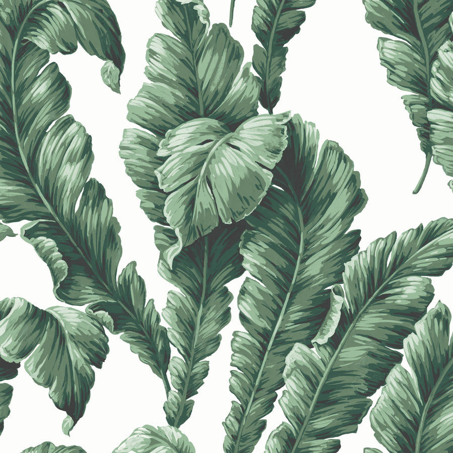 Banana Leaf Green Wallpaper By Woodchip & Magnolia
