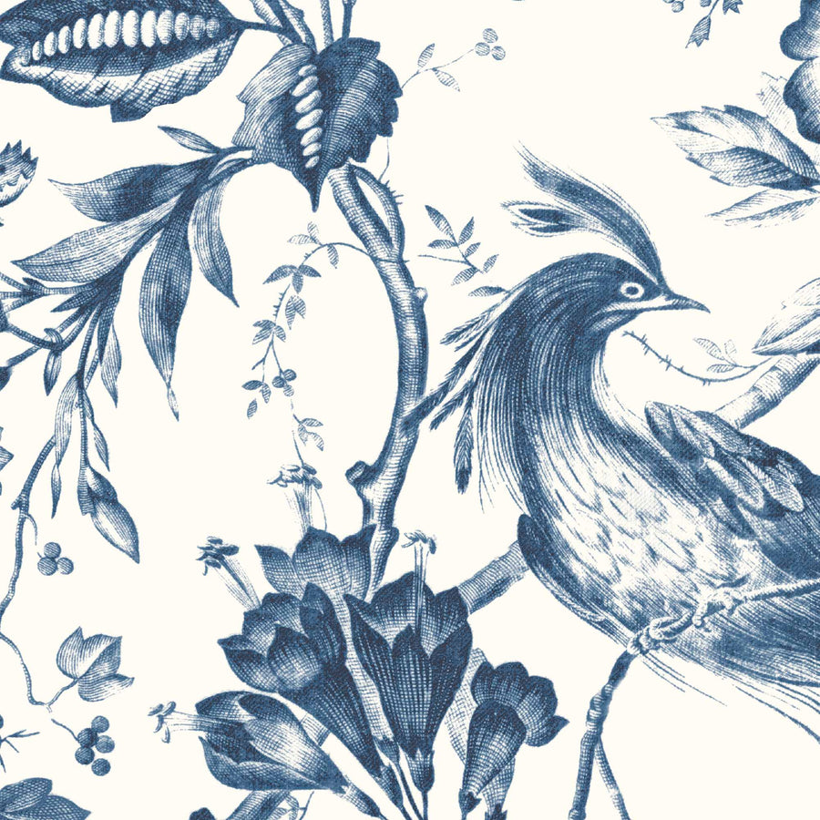 Plumage Porcelain Blue Botanical Bird Wallpaper By Woodchip & Magnolia