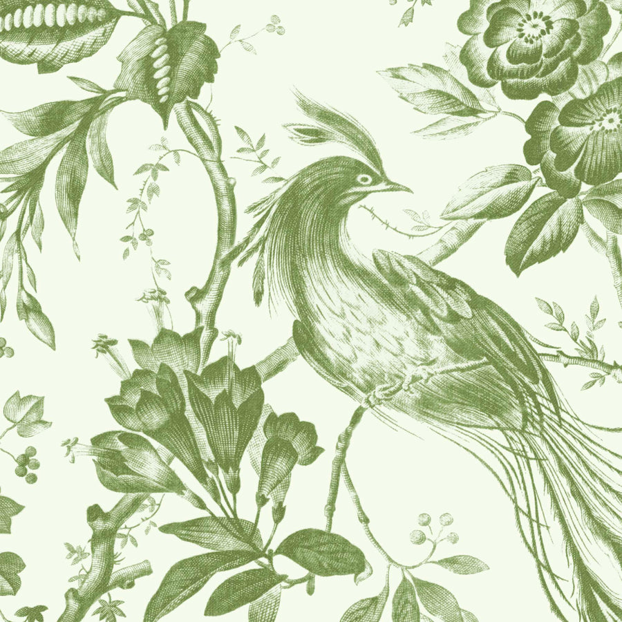 Plumage Green on Green Wallpaper