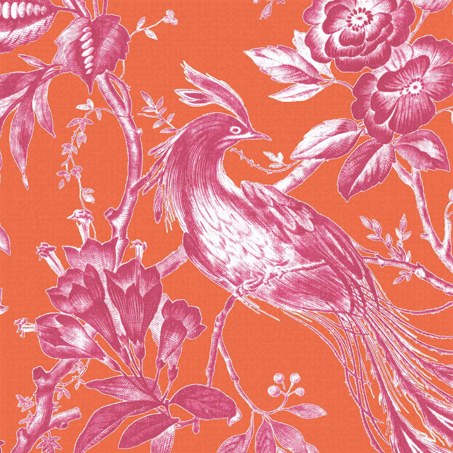 Plumage Orange/Fuchsia Wallpaper