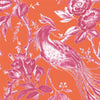 Plumage Orange/Fuchsia