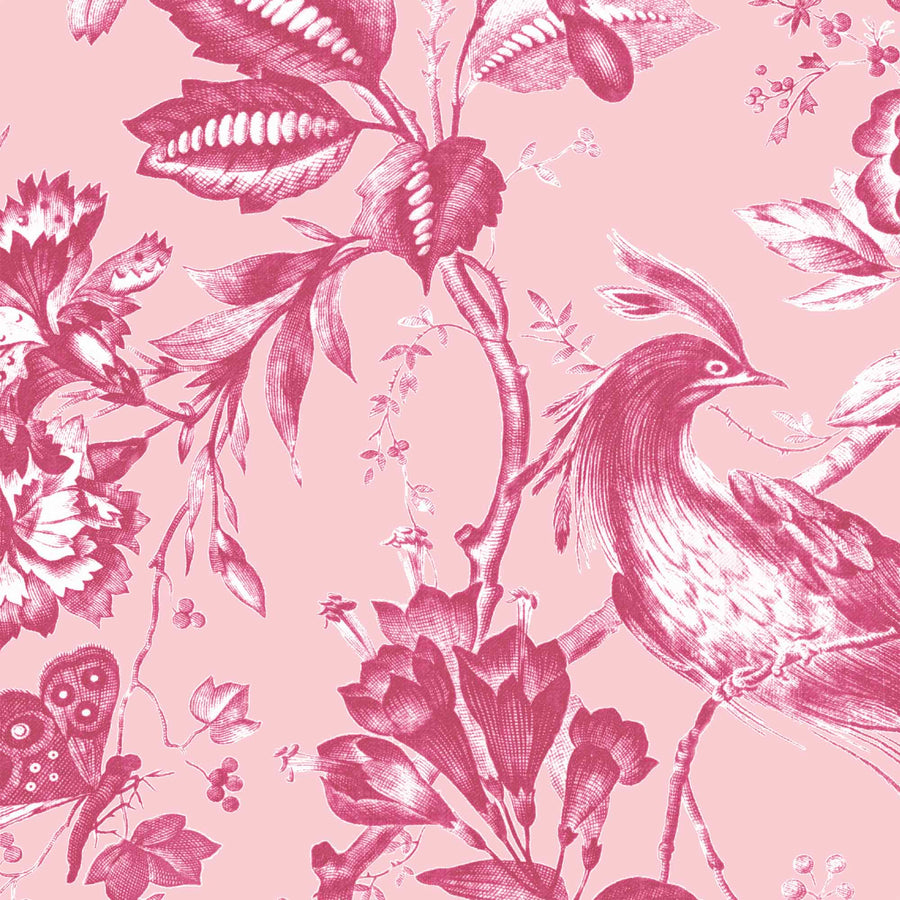 Plumage Peony Pink Botanical Bird Wallpaper By Woodchip & Magnolia