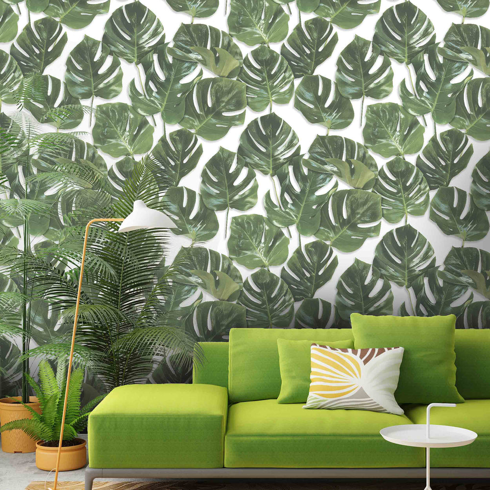 Monstera Green & White Wallpaper