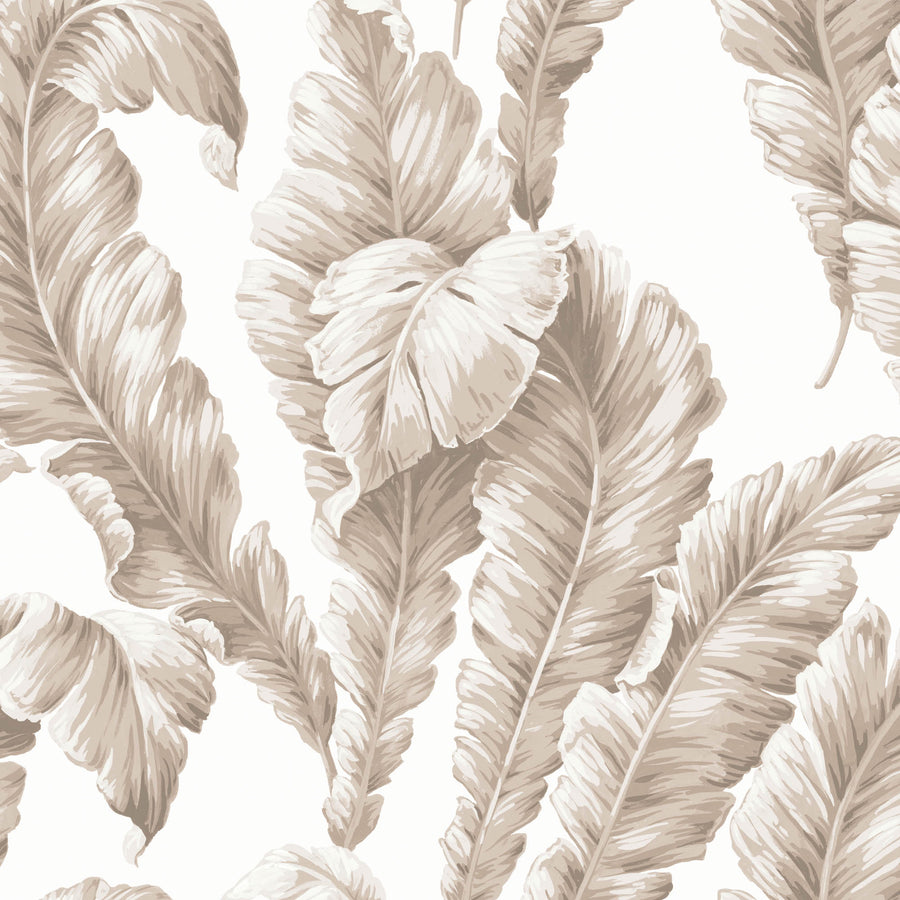 Banana Leaf Natural Wallpaper By Woodchip & Magnolia