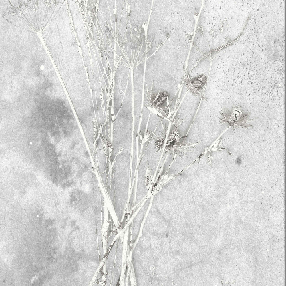 Meraki Concrete Effect Botanical Wallpaper​
