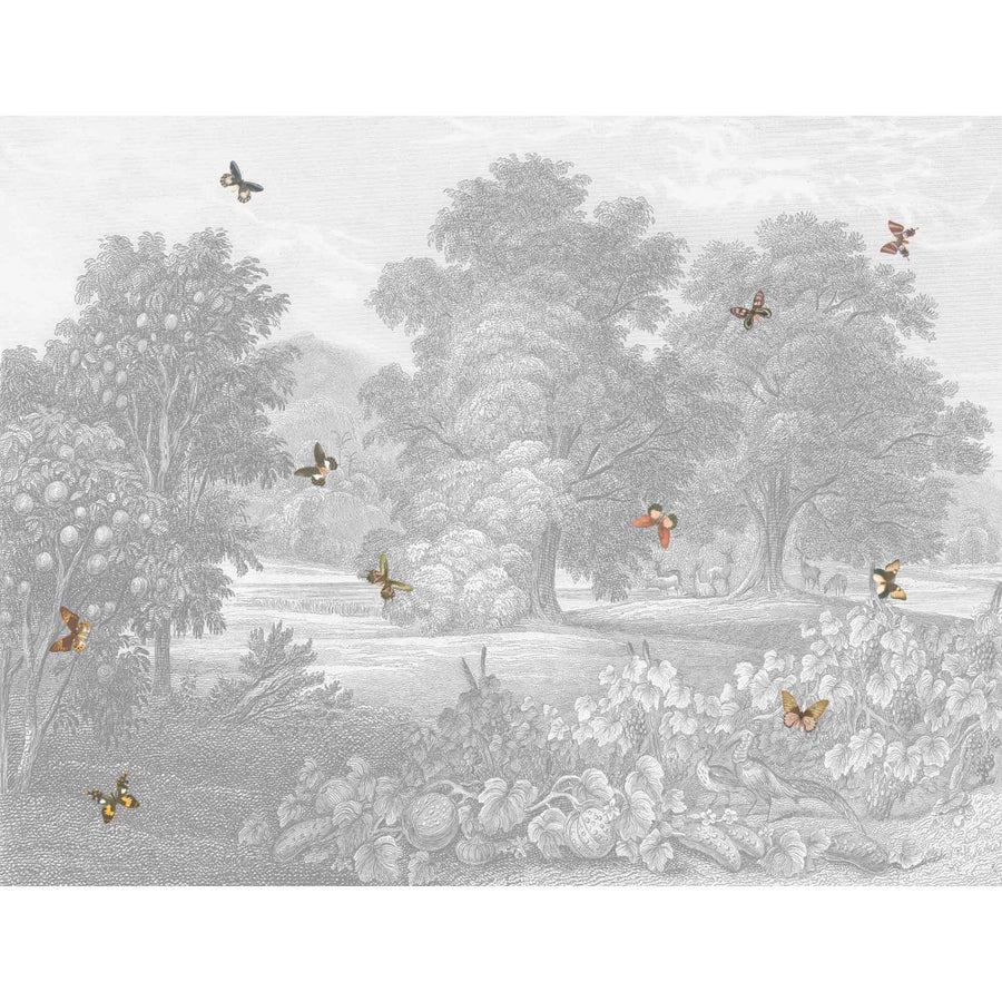 Land of Milk & Honey Butterflies Wallpaper Wall Mural by Woodchip & Magnolia