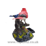 Battery Operated Electronic Birds Singing Moving & Chirping_7
