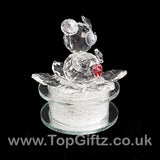 Crystal Clear Teddy Bear Ornament Sitting Circular Round LED_5