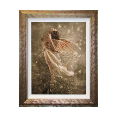 Butterfly Wings Framed Picture