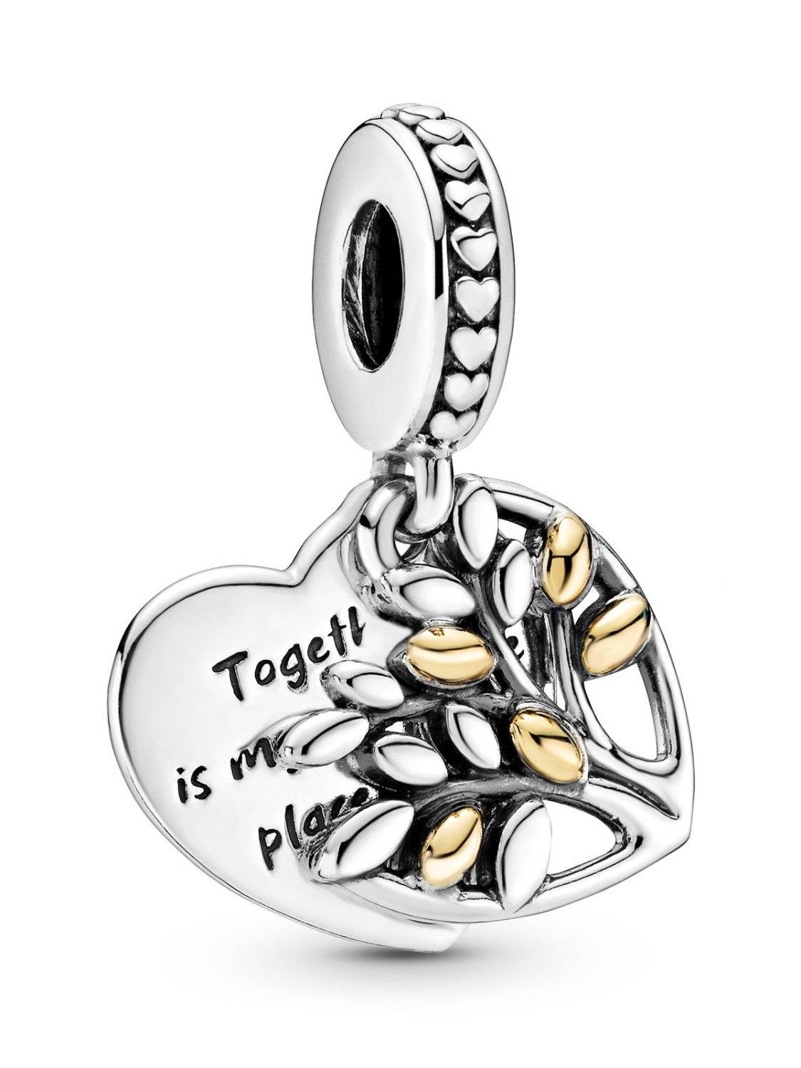 Pandora Two Tone Family Dangle Charm