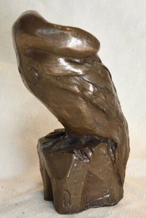 Sculpture. Cormorant, cold-cast resin with copper. By Gleed 3D.(32SG6)