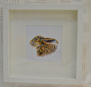 Print. Framed print of colour pencil drawing of Hare by Between the woods & sea. (91FHCPD1)
