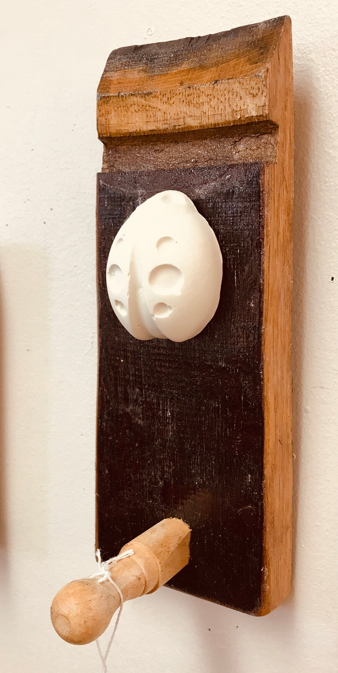 Stave hook with plaster cast insect motif. Ladybird.
