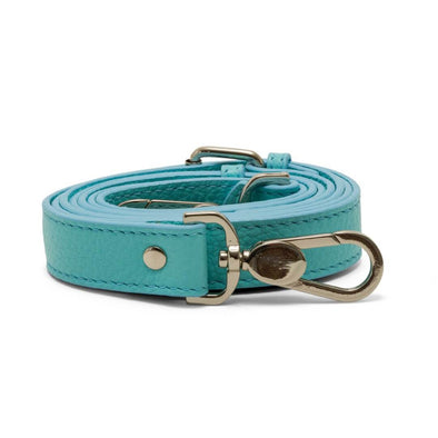 Interchangeable Strap - Blue - Scarlett Woods