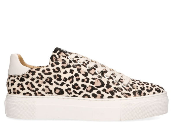 Ted leather sneaker jungle
