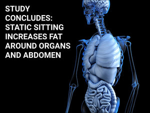 Static Sitting Leading to Increase in Liver, Visceral and Abdominal Fat