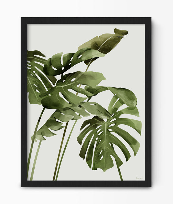 Monstera Botanical Print