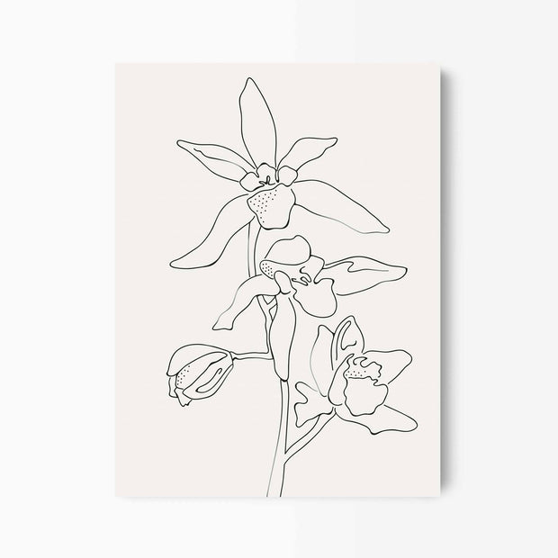 Orchid Flower Line Art - Green Lili