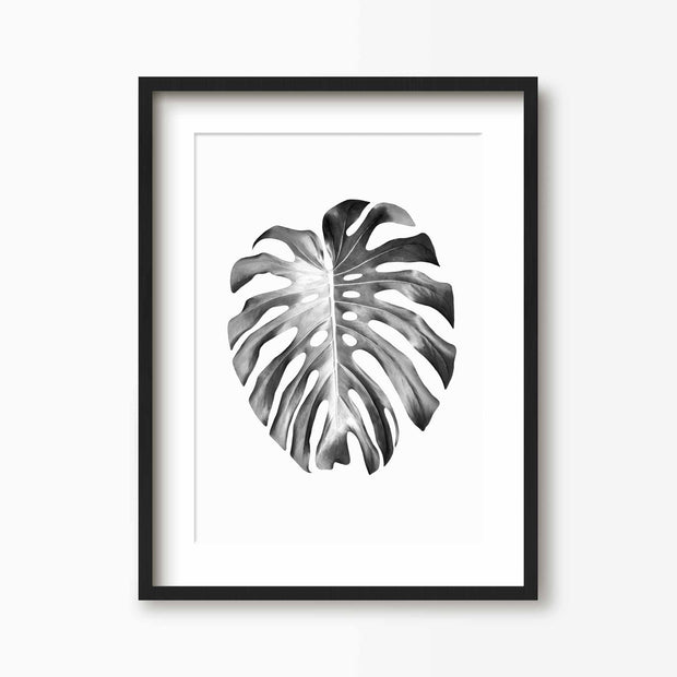 Split Leaf - Tropical Art Print