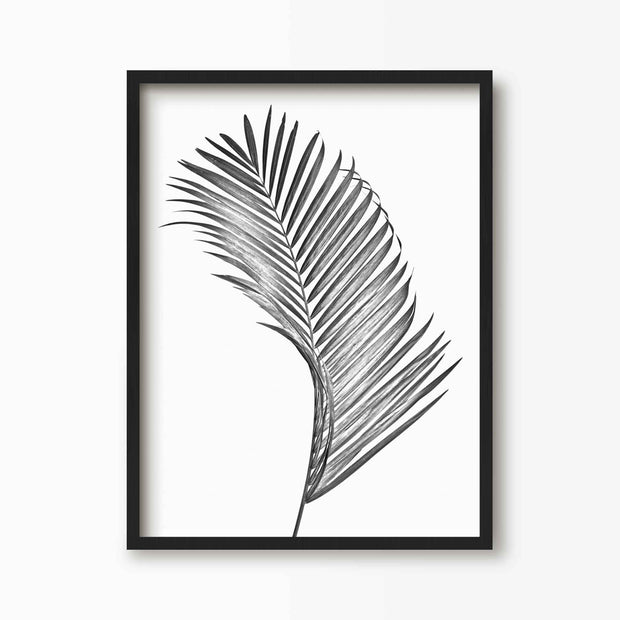 Palm Leaf - Tropical Art Print - Green Lili