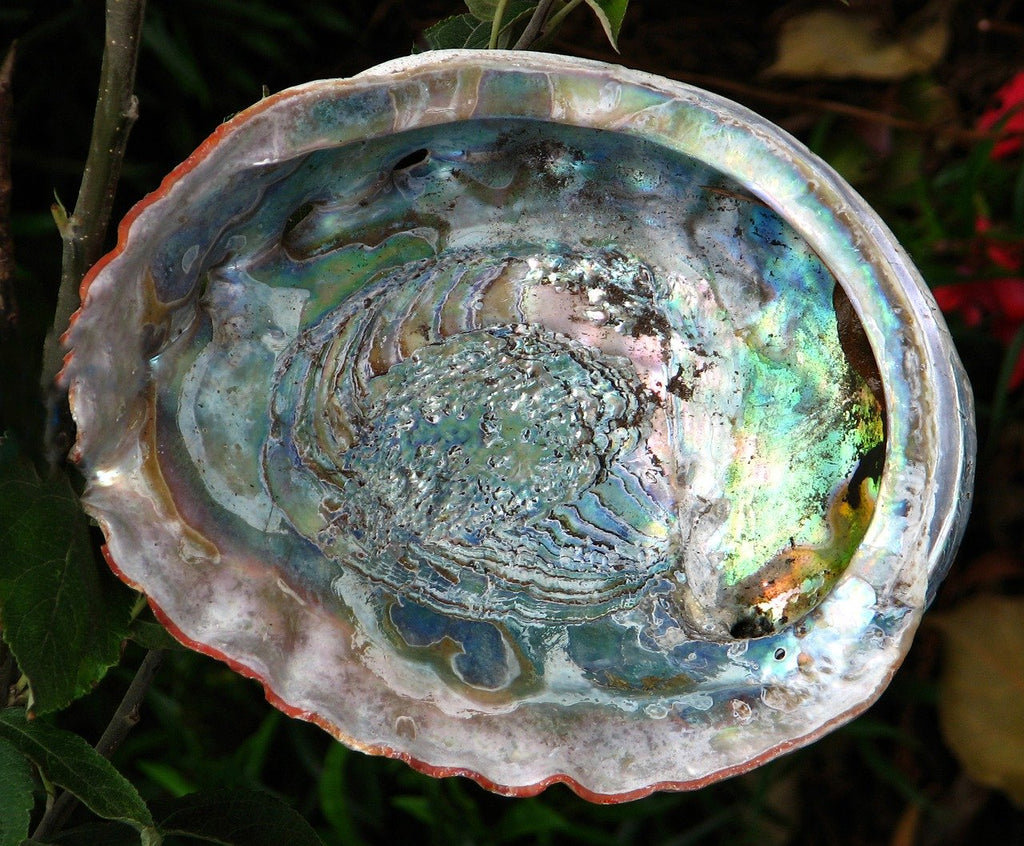 Sterling Silver and Abalone Shell Butterfly (Large) Pendant