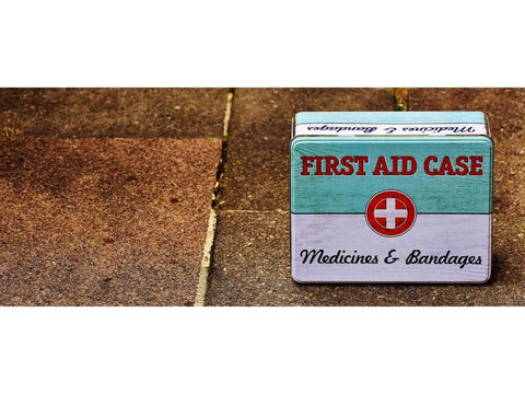Summer Safety Tips for Dogs First Aid