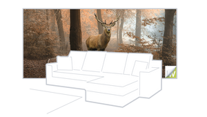 Launch of Autumn Wall Murals - Click here