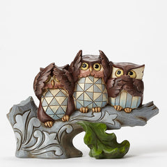 Three Owls on Branch