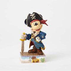 Mickey Pirate