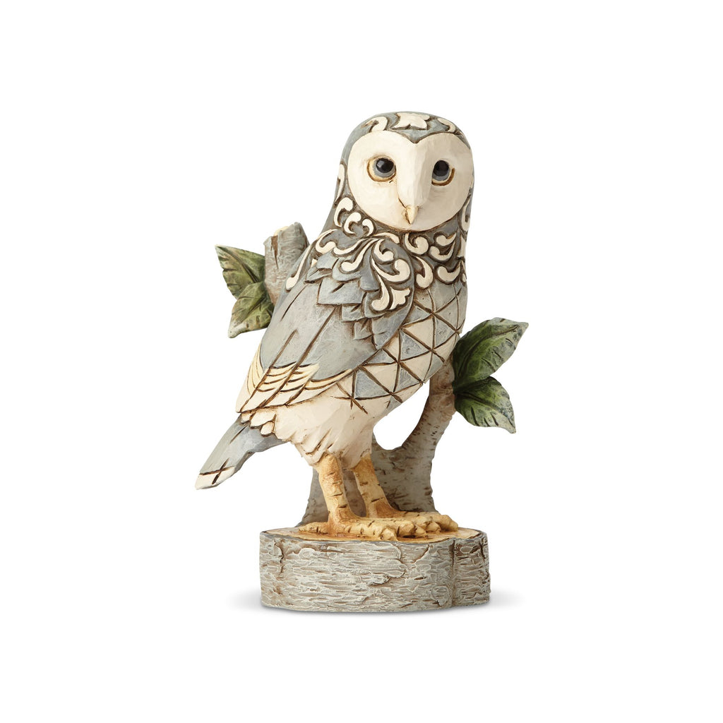 White Woodland Owl on Branch