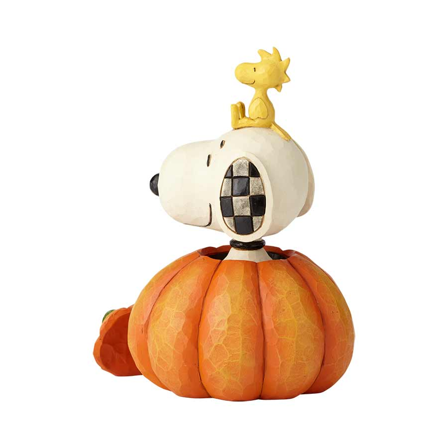 Snoopy Woodstock in pumpkin