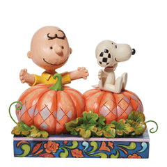 CB/Snoopy in pumpkin patch