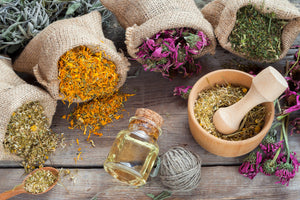 Intermediate Cold Process Soapmaking Workshop: Herbal Infusions