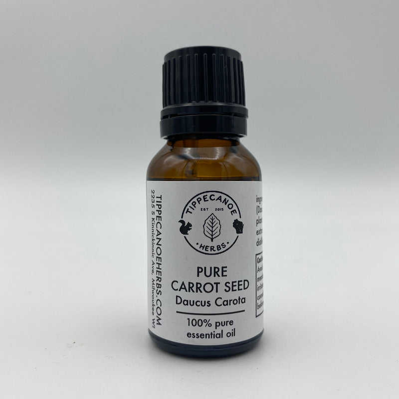 Carrot Seed Essential Oil - Tippecanoe Herbs Herbalist Milwaukee