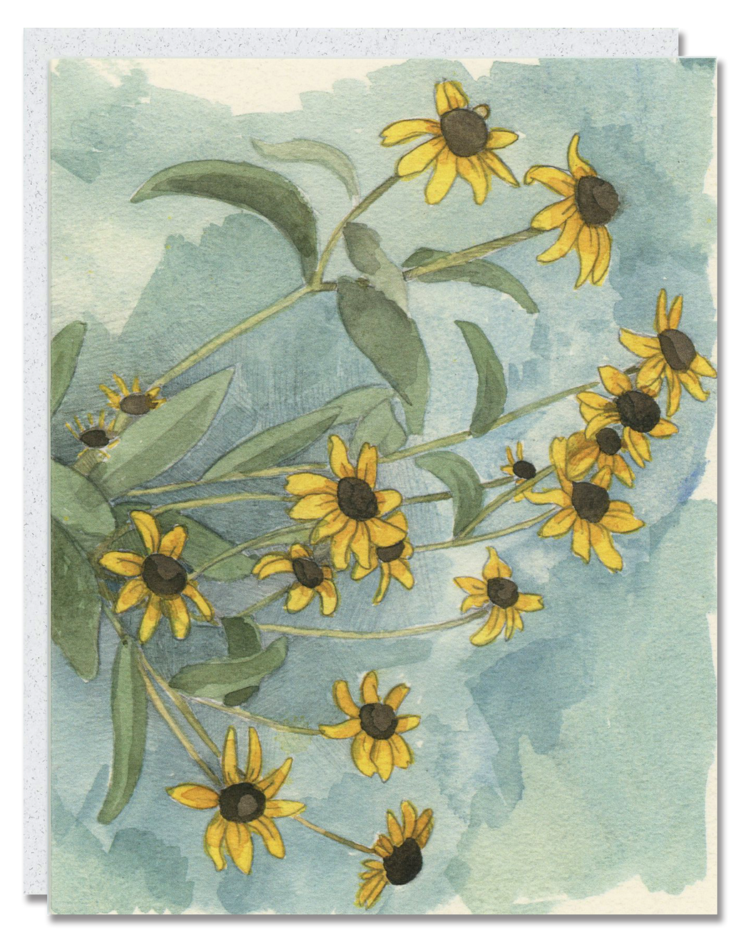 Black-Eyed Susan card