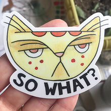 So What? Cat Sticker