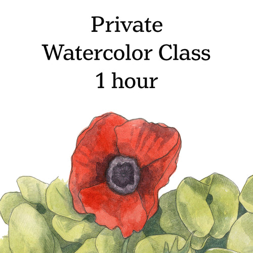 Class-Private Watercolor lesson