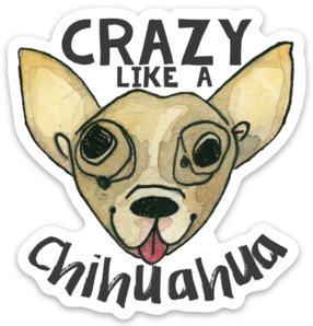 Crazy Like a Chihuahua Magnet