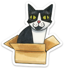 Tuxedo Cat in Box Sticker